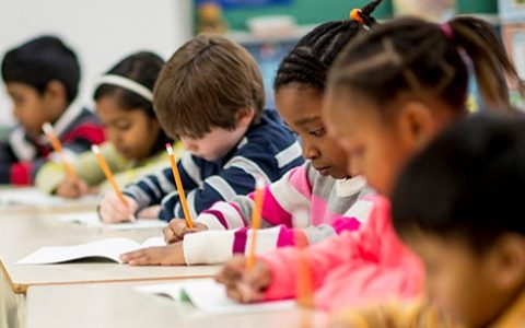State Standards:  Not a Substitute for Curriculum